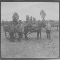 PHOTO SOLDATS ALLEMANDS AVEC ATTELAGE ET ANE - Guerre, Militaire