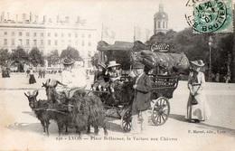 LYON - Place Bellecourt, La Voiture Aux Chèvres - - Lyon