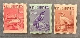 Albania 1961; Animals, Fauna, Birds; MNH** VF; CV 32 Euro!! - Collections, Lots & Series