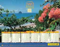 °° Calendrier Almanach La Poste 2002 Lavigne - Dépt 32 - Rivages Exotiques - Kalenders
