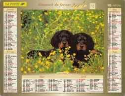 °° Calendrier Almanach La Poste 2004 Lavigne - Dépt 32 - Chiens - Kalenders