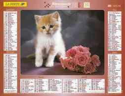 °° Calendrier Almanach La Poste 2006 Lavigne - Dépt 32 - Chatons - Kalenders