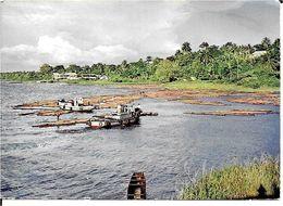 GHANA . LOGS FOR SHIPMENT  WEST AFRICA - Ghana - Gold Coast