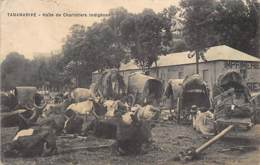 TANANARIVE - Halte De Charretiers Indigènes, Imprimerie Du Progrès De Madagascar - Ed. Guyard. - Madagascar