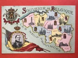 1905 - SOUVENIR DE BELGIQUE - LES NEUF PROVINCES - ROI LEOPOLD I - Patriotiques