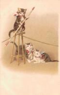 ILLUSTRATION CIRQUE CHATS FUNAMBULE CARTE PRECURSEUR PAS CIRCULEE - 1900-1949