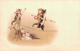 ILLUSTRATION CIRQUE CHATS FUNAMBULES CARTE PRECURSEUR PAS CIRCULEE - 1900-1949