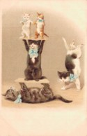 ILLUSTRATION CIRQUE CHATS EQUILIBRISTES CARTE PRECURSEUR PAS CIRCULEE - 1900-1949