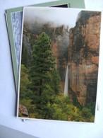 America USA UT Zion National Park - Zion