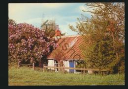 Retranchement - Huisje Bij Terhofstede [AA45 1.649 - (gelopen Met Pz) - Ohne Zuordnung