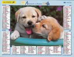 °° Calendrier Almanach La Poste 2007 Lavigne - Dépt 32 - Chiens - Kalenders