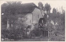 Bilzen - Broekheim Molen - Bilzen