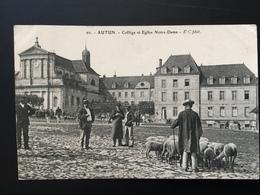 CPA Autun Paysan Avec Ses Moutons Devant Le Collège Et L'église Notre Dame 1910 - Paysans