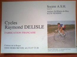 CYCLES RAYMOND DELISLE  -  Chateau De La Roque 50000 HEBECREVON  - Ateliers St Hilaiure De Riez VENDEE  - - Cycling