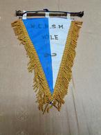 Pavillon Tissu Du Royal Club Nautique Sambre & Meuse , Section Voile, Date Des Années 70. Très Bonne Qualité. - Canottaggio