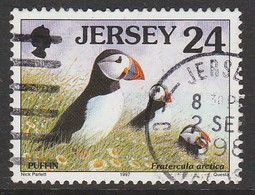 Jersey 1997 Birds 24 P Multicoloured SW 763 O Used - Jersey