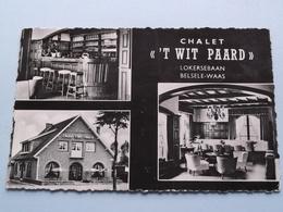 """Chalet """" 'T WIT PAARD """" Lokersebaan BELSELE-WAAS ( Camera Lokeren ) Anno 19?? ( Zie / Voir Photo ) ! - Sint-Niklaas"""