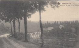 HERBEUMONT / ROUTE DE CONQUES ET PONT SUR LA SEMOIS 1908 - Herbeumont