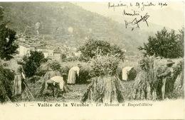 Vallée De La Vésubie La Moisson à Roquebillière - Roquebilliere