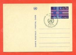 INTERI POSTALI - ONU  NEW YORK- 1977 - New York - Sede Centrale Delle NU