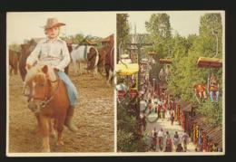 Slagharen - Ponypark [AA45 4.194 - (gelopen Met Pz) - Netherlands