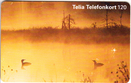 SWEDEN(chip) - Landscape In The Fog, 11/95, Used - Landschappen
