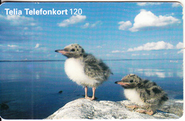 SWEDEN(chip) - Birds, 07/97, Used - Sweden