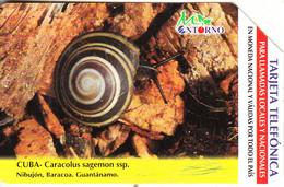 CUBA(Urmet) - Snail, Caracolus Sagemon Ssp., Tirage 75000, Used - Uganda