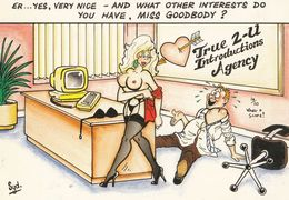 Dating Agency Blind Date Hobbies Sexy Lady In Suspenders Comic Humour Postcard - Humour