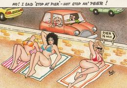 Stop At The Pier NOT PEER At Topless Ladies Risque Comic Humour Postcard - Humour