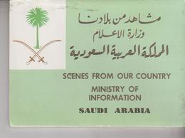 SAUDI ARABIA MINISTRY OF INFORMATION LOT 10 POSTCARDS - Arabia Saudita