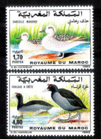 14645  Ducks - Canards - Birds - Maroc Yv 1151-52 - MNH - 1,50 (4) - Ducks