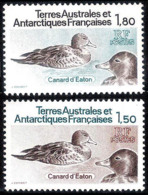 14645  Ducks - Canards - TAAF Yv 97-98 - MNH - 2,85 (15) - Ducks