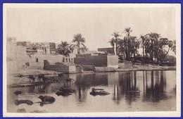 EGYPTE CARTE PHOTO Village Nubien Sur Le Nil ( Très Très Bon état ) +4112 - Egypt
