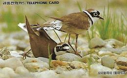 USATA-COREA DEL SUD-UCCELLI (BIRDS) - Korea, South