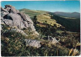 Col Du Beal, Alt. 1440 M. - Perpective En Direction Sud - Les Monts Du Forez (Sommet De Pierre-en-Haute) - Clermont Ferrand