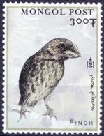 Mongolia 2000 MNH, Birds, Finch, Millennium Stamp - Songbirds & Tree Dwellers