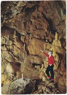 Grottes De Hampteau-Hotton : Salle De Minuit - (Belgie/Belgique) - Hotton