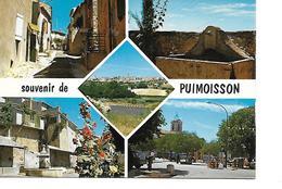 04 PUIMOISSON Cpm Multivues - Altri Comuni