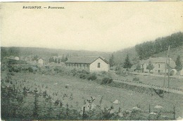 Baconfoy , Panorama - Tenneville