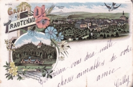 Tchequie -  Gruss Aus TRAUTENAU  -  TRUTNOV - Litho 1902 - Czech Republic