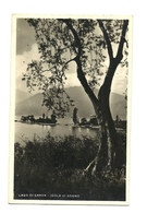 Italia Regno - Cartolina Lago Di Garda      14/46 - Vacanze & Turismo