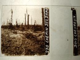 Guerre 1914-18 - Chemin Des Dames - Bois Chevreux -- Plaque De Verre StéréoscopiqueTBE - Plaques De Verre
