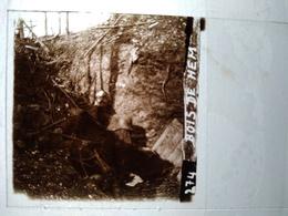 Guerre 1914-18 - Bois De HEM - Cadavre Allemand - Plaque De Verre StéréoscopiqueTBE - Plaques De Verre