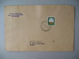 Nouvelle-Zélande Pahiatua  1968   Lettre pour La France - New Zealand Cover Timbre Sufrage Universel Universal Suffrage - Nouvelle-Zélande