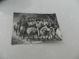 Cp  Les Belles  Images  De Camargue - Autres