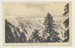AK  Hornisgrinde 1910 - Allemagne