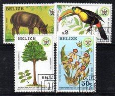 BIG - BELIZE 1981, Serie Yvert 562/565  Usata   (2380A)  Indipendenza - Belize (1973-...)