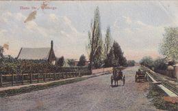 Hume Street Wodonga Australia Old Postcard - Postcards