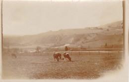 Roanne Coo Tournant Dans L'Amblève 1920 (9 X 6) - Foto's